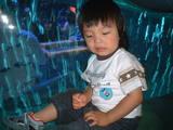 20050612/s/dscf0035.jpg