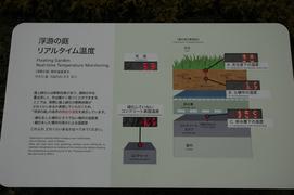 20051211/s/dsc_2311.jpg