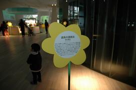 20051211/s/dsc_2320.jpg