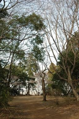 20060401/s/dsc_5745.jpg