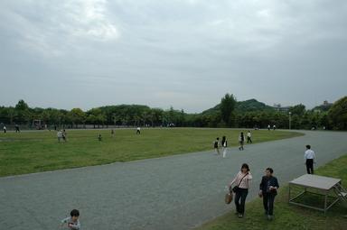 20060514/s/dsc_6349.jpg