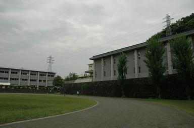 20060514/s/dsc_6412.jpg