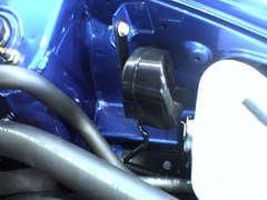20060527/s/dsc00908.jpg