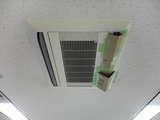 20060531/s/dsc00918.jpg